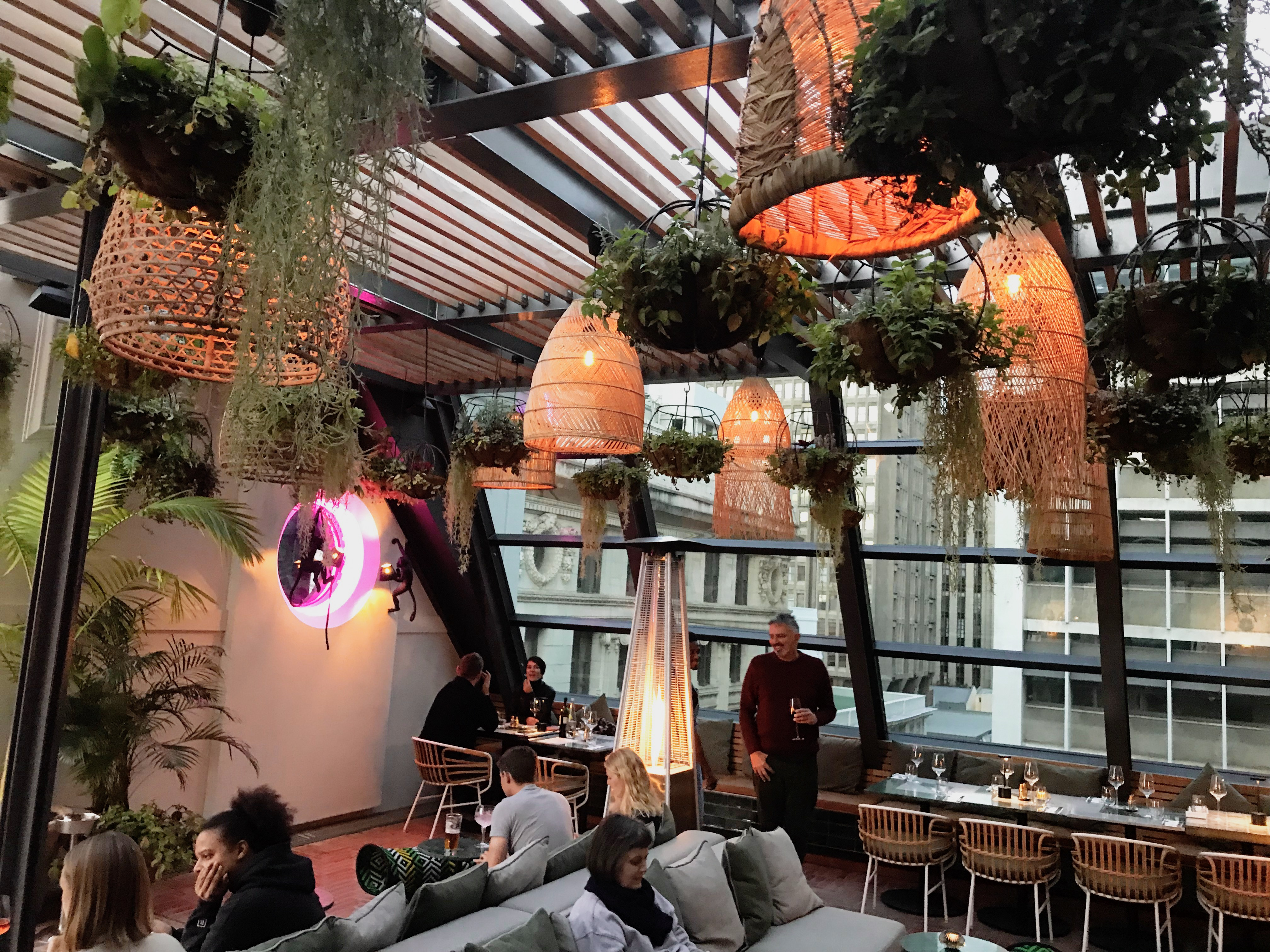 Plant chandeliers on Cape Town rooftop restaurant and bar