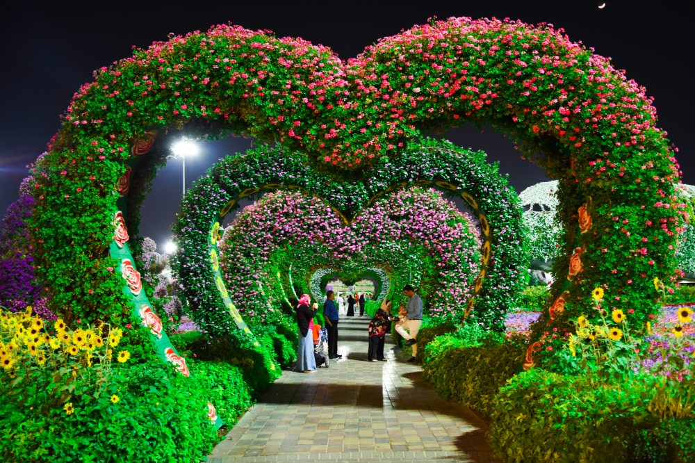 heart-shaped-pink-and-purple-flower-garden-1040626