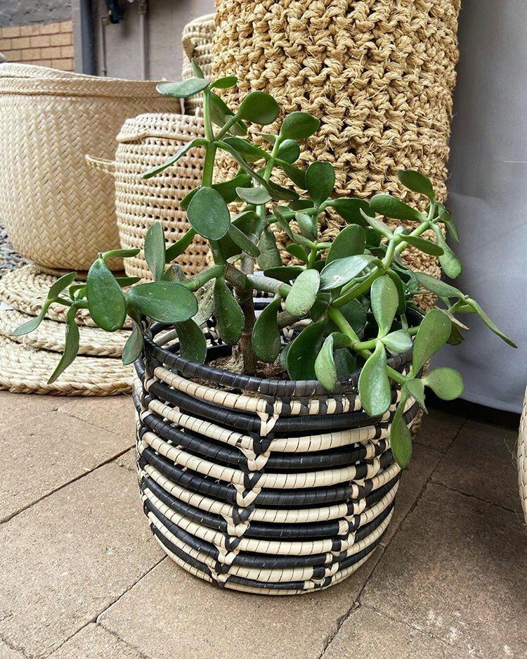 African Handcrafted plant basket